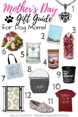 Small Of Gifts For Dogs