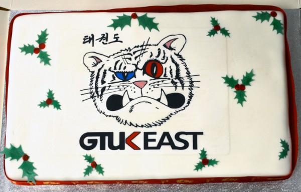 taekwondo-christmas-cake-2014