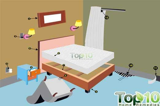 Where Do Bed Bugs Hide Bed Bug Guide