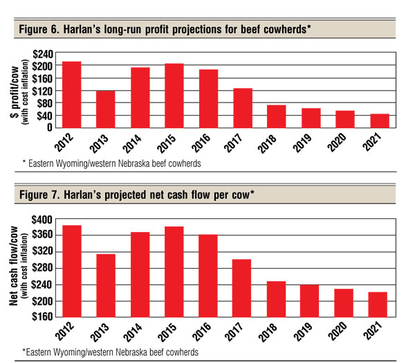 Forecasting The Cattle Market For The Rest Of The Decade Beef Magazine