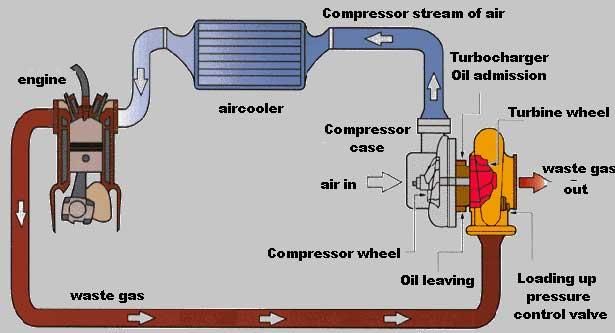 Crx Turbo Diagram - 8euoonaedurbanecologistinfo \u2022