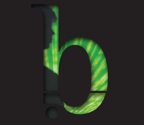 "B. Lebanon – ""Night Secrets Uncovered"""