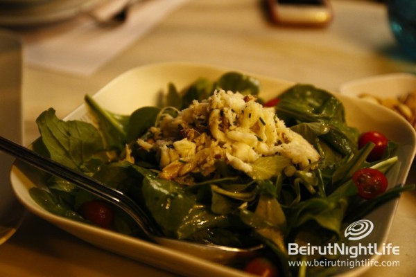 White Coast: A Fresh & Relaxed Seafood Dining Experience