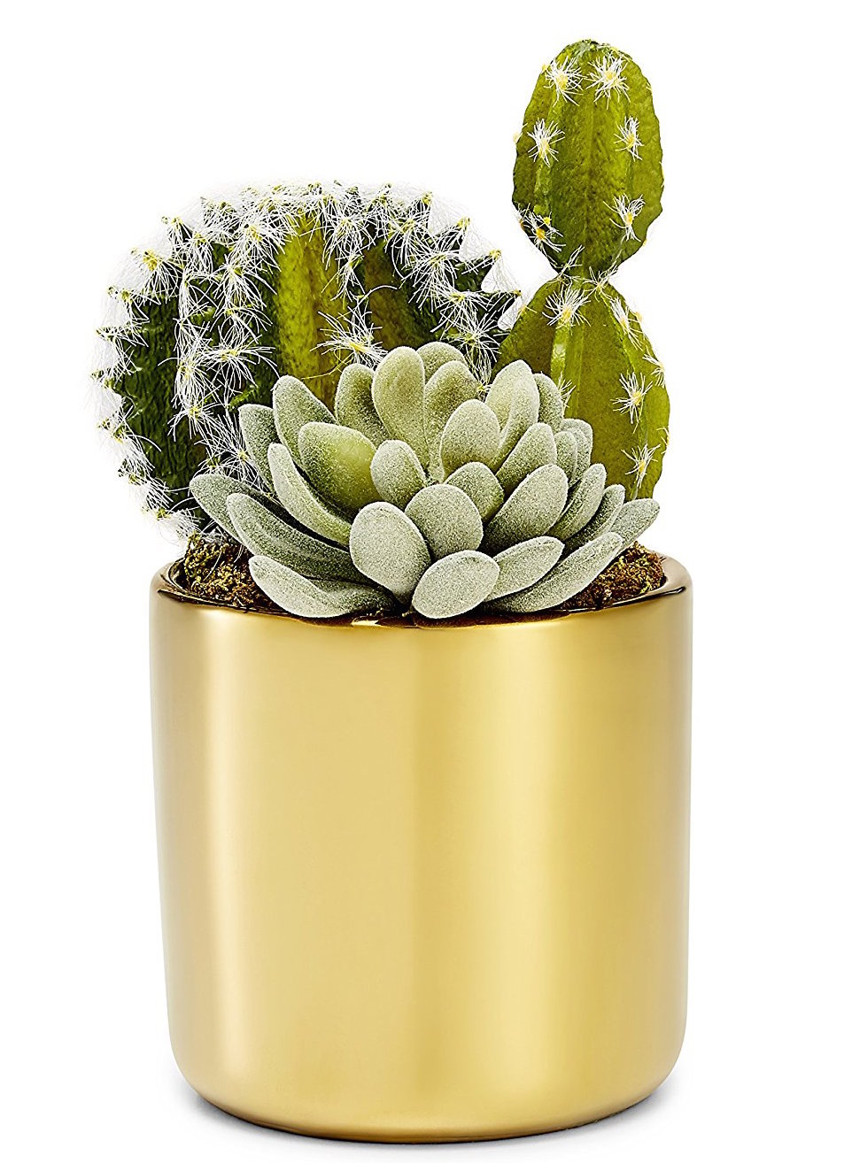 Our metallic, gold succulent pot, now available for order