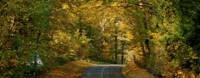 route vallée de chevreuse