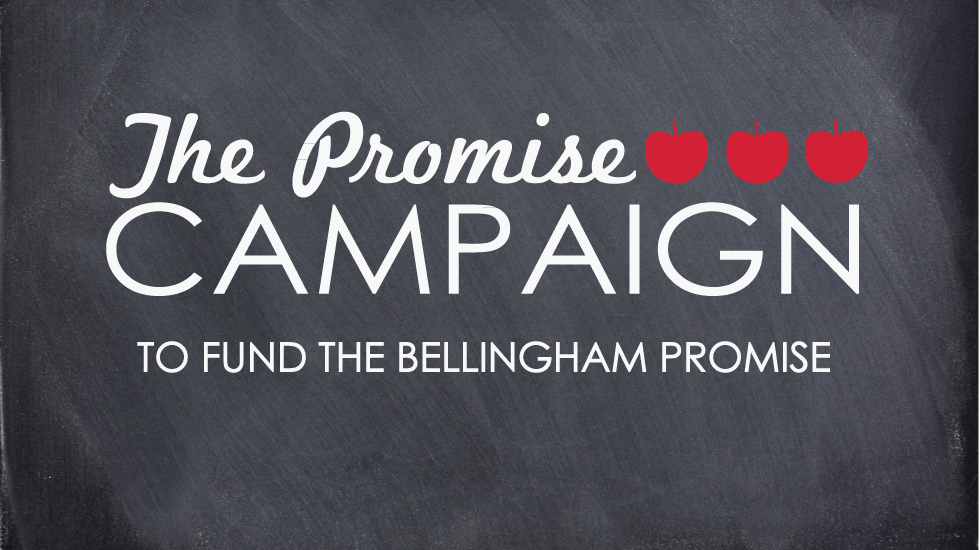promise-campaign-slider-template