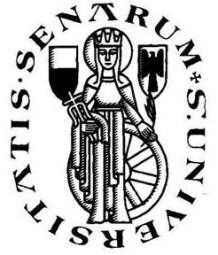 Il logo dell'Università degli Studi disegnato da Massimo Dolcini