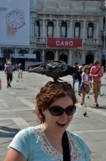 The Pigeons of St. Mark's Square