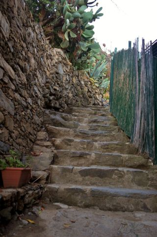 Many steep stepss!