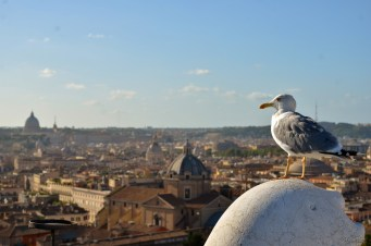 The Vatican in the distance