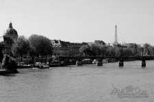 Paris fromPont Neuf