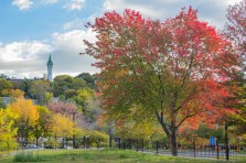 Colorful trees in Jackson Square in Boston