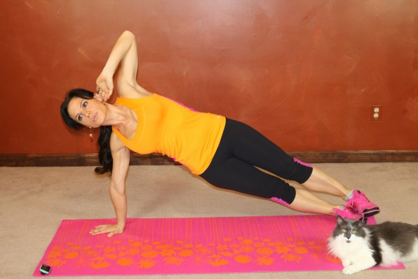 Side Plank Hip Drop