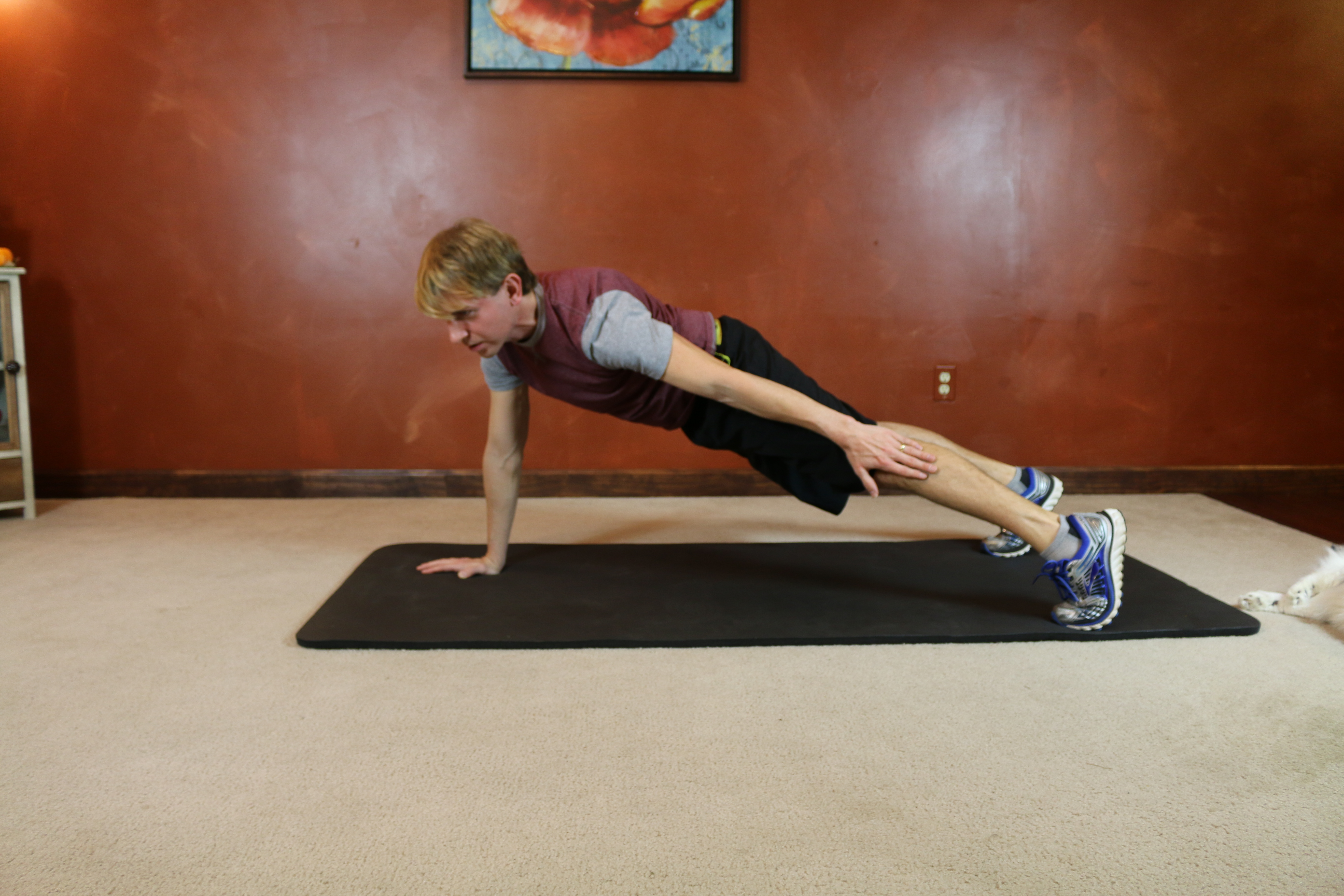Plank Side Tap: Part 2
