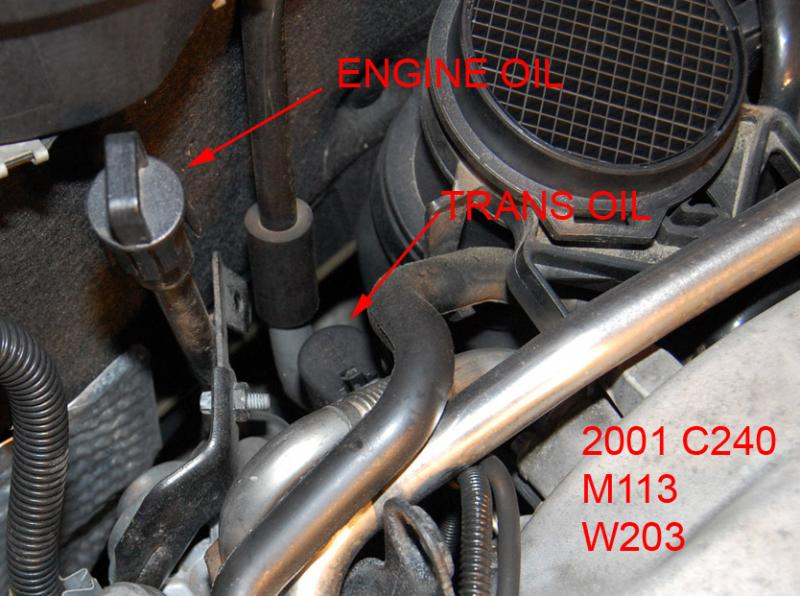 03 C320 Coupe Oil Dipstick and oil extractor - Mercedes-Benz Forum