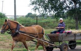 Крупные агрохолдинги готовят новый удар по мелким сельхозпроизводителям?