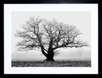 Top 15 of Black And White Framed Art Prints