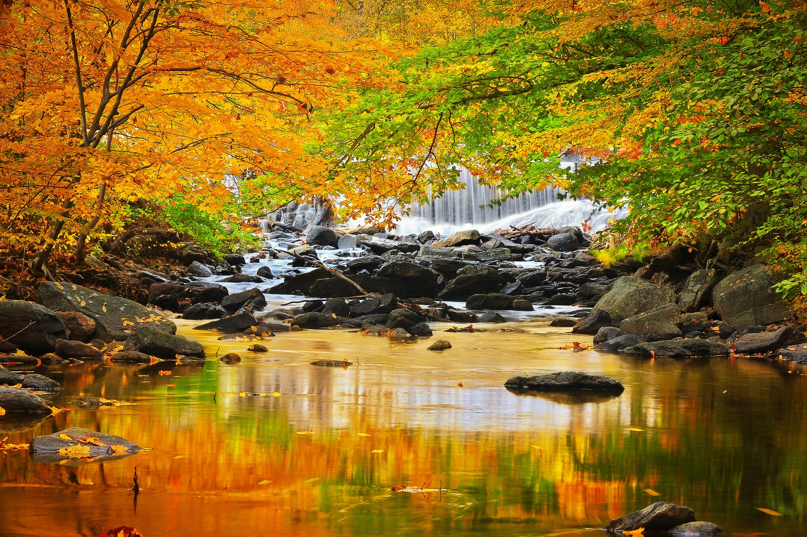 Fall Foliage Wallpaper Screensavers A Season Of Change Catoctin Mountain Maryland Bernard
