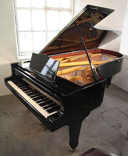Bluthner concert grand piano for sale with a black case Modern