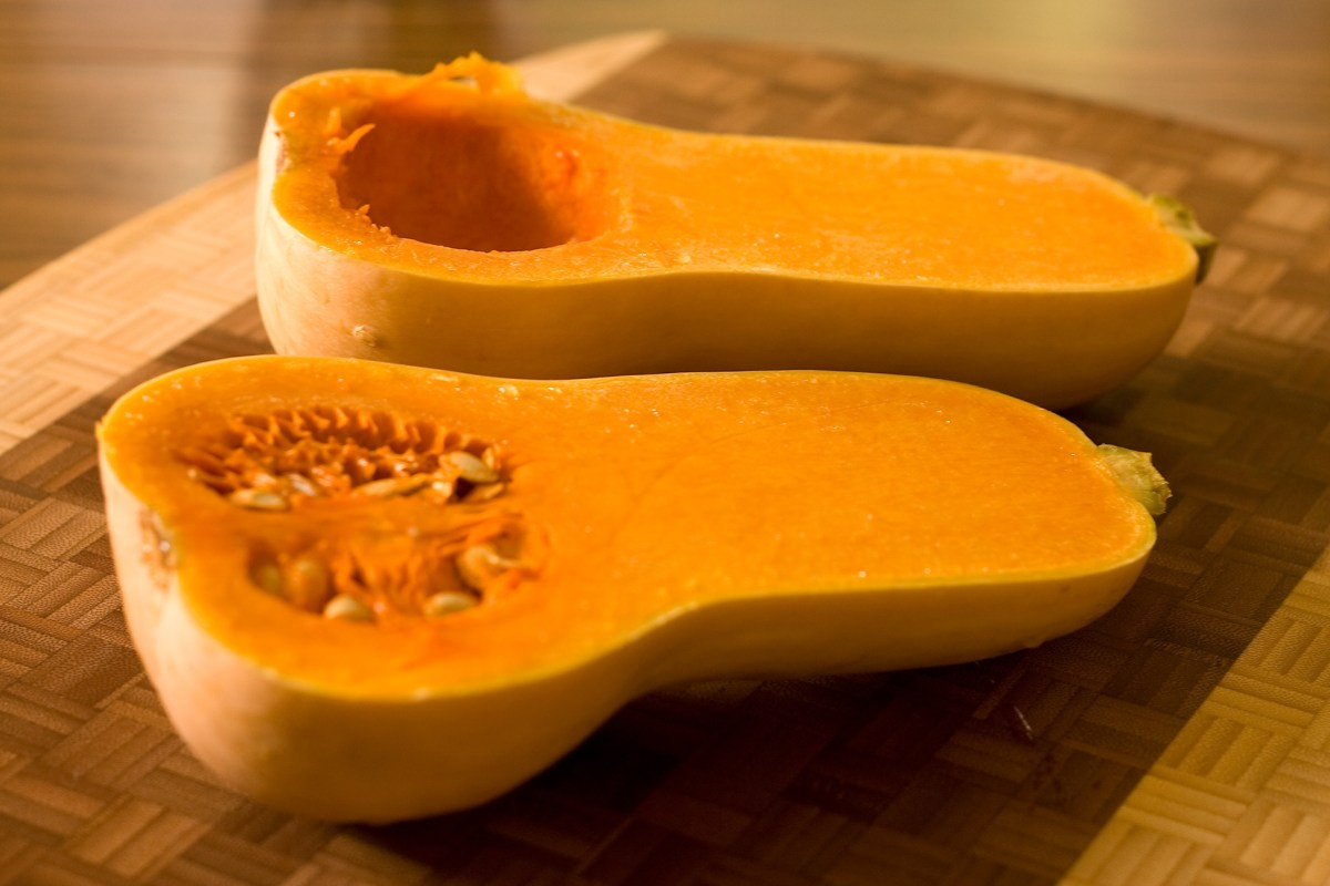 One butternut squash, two recipes