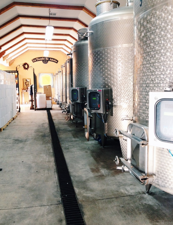 visit mexican wine country, baja california, visit ensenada, mexico