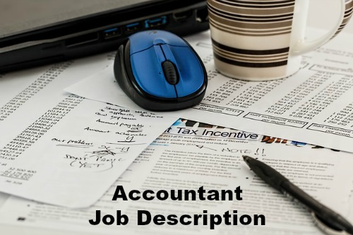 Junior Accountant Job Description