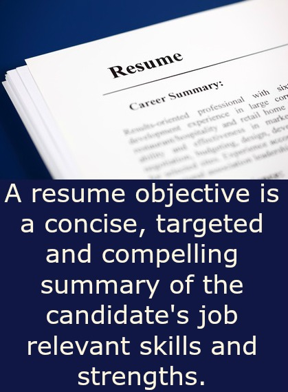 Resume Objective Samples that Really Work - professional resume objective samples