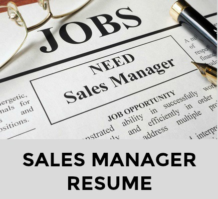 Sample Sales Management Resume