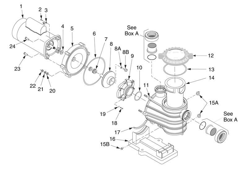 pentair pumps wiring diagrams