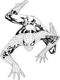 Spiderman Coloring Printable
