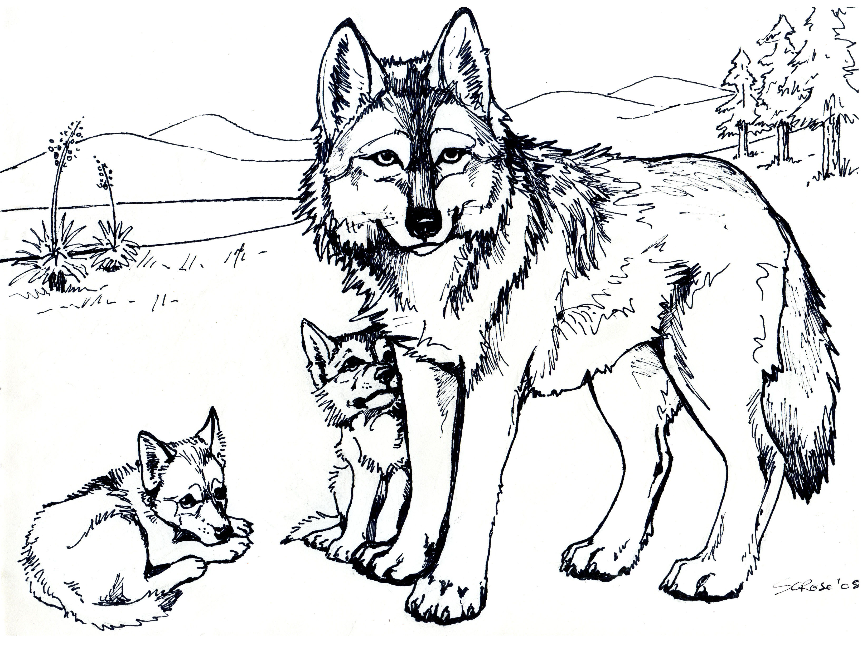 Clawdeen wolf coloring pages