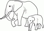 Cute Animal Coloring Page Elephant