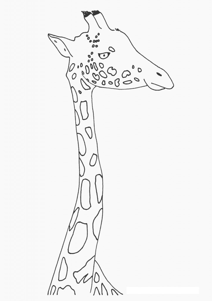 cute baby giraffe coloring pages