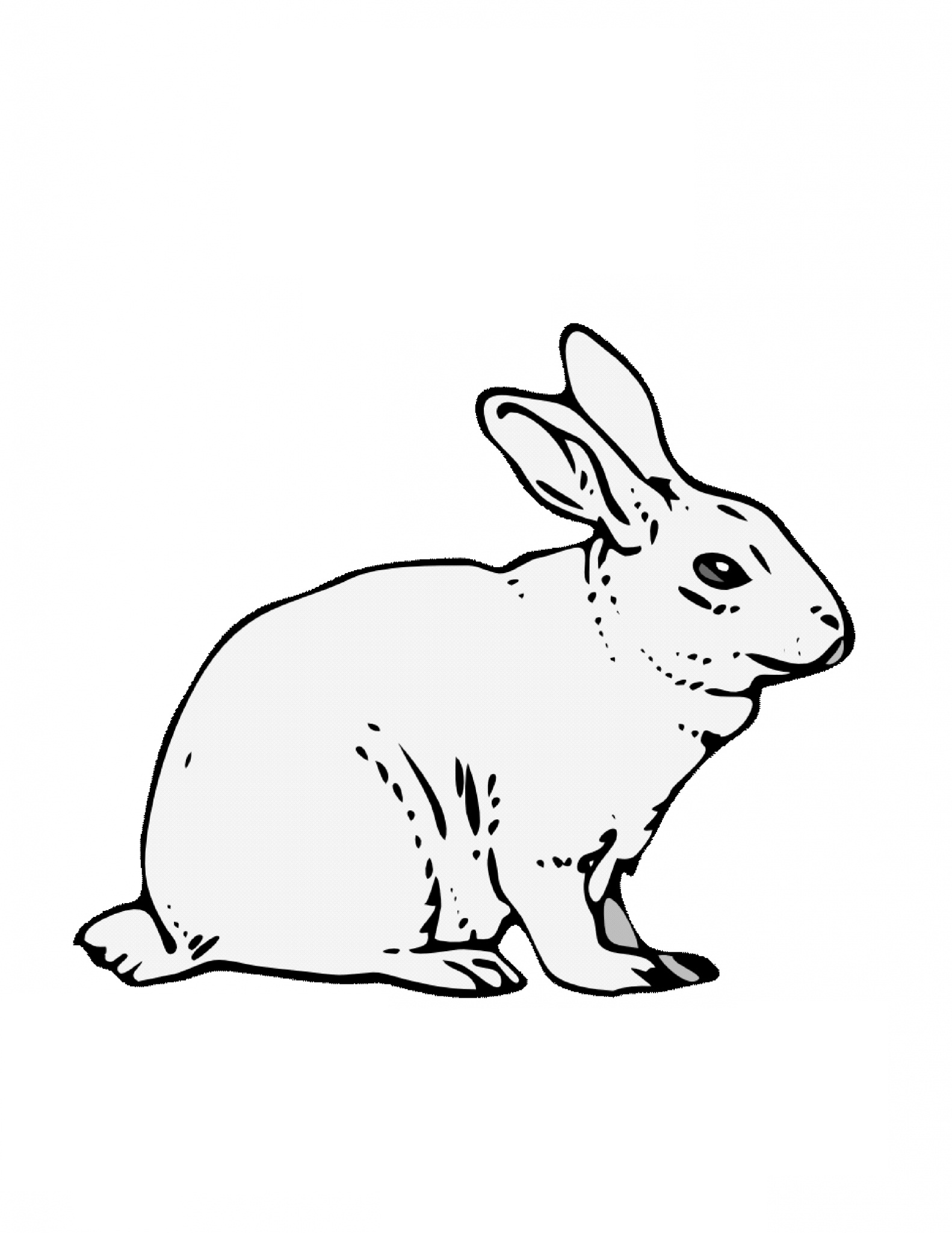 printable coloring pages rabbits