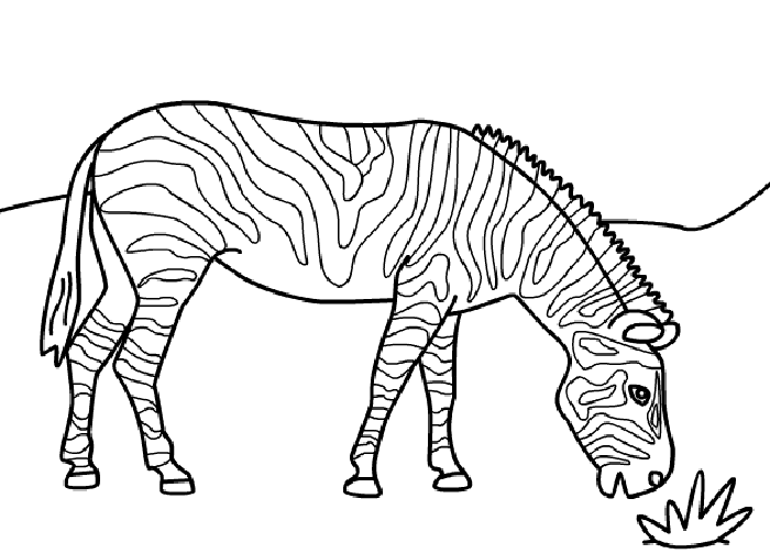 Amazing Apple Coloring Pages For Preschoolers