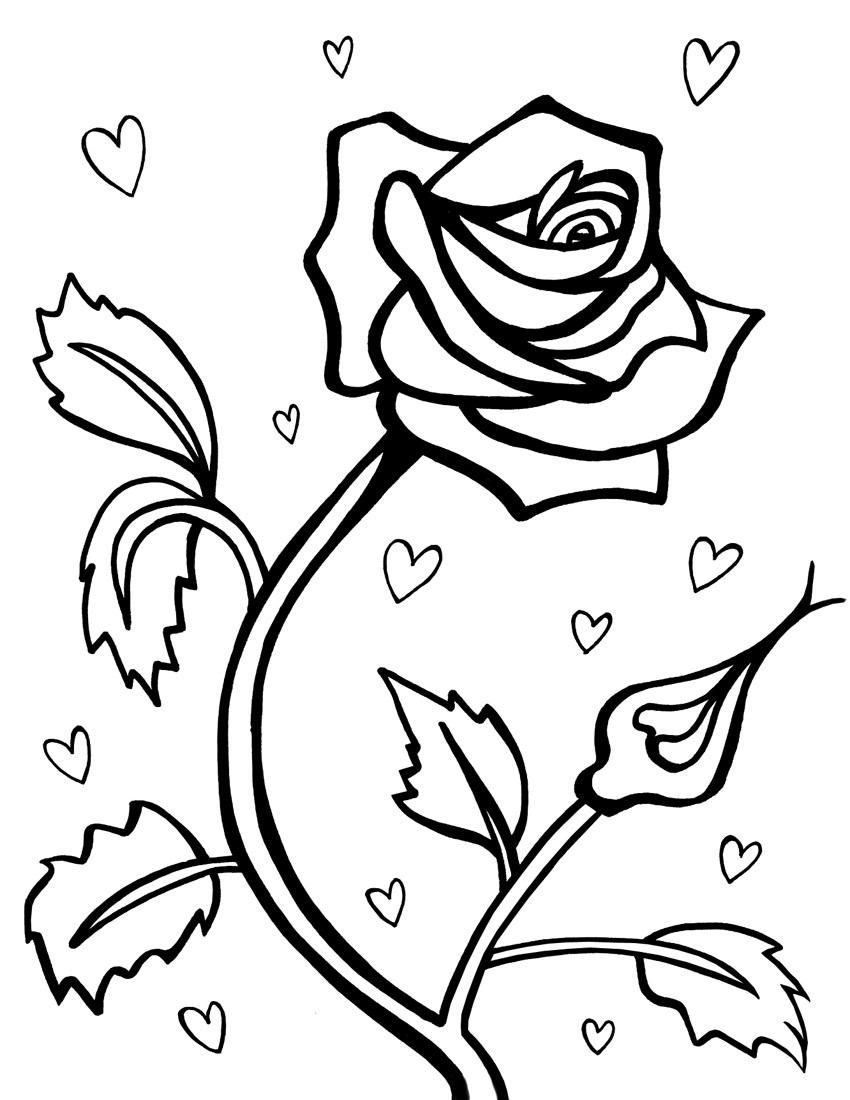 Coloring pages roses -  Roses Coloring Pages Download