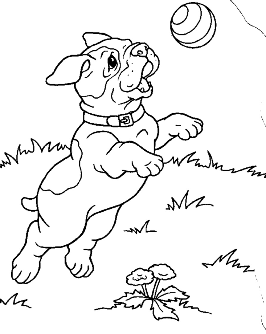 Printable coloring pages of puppies -  Printable Puppies Coloring Pages Download