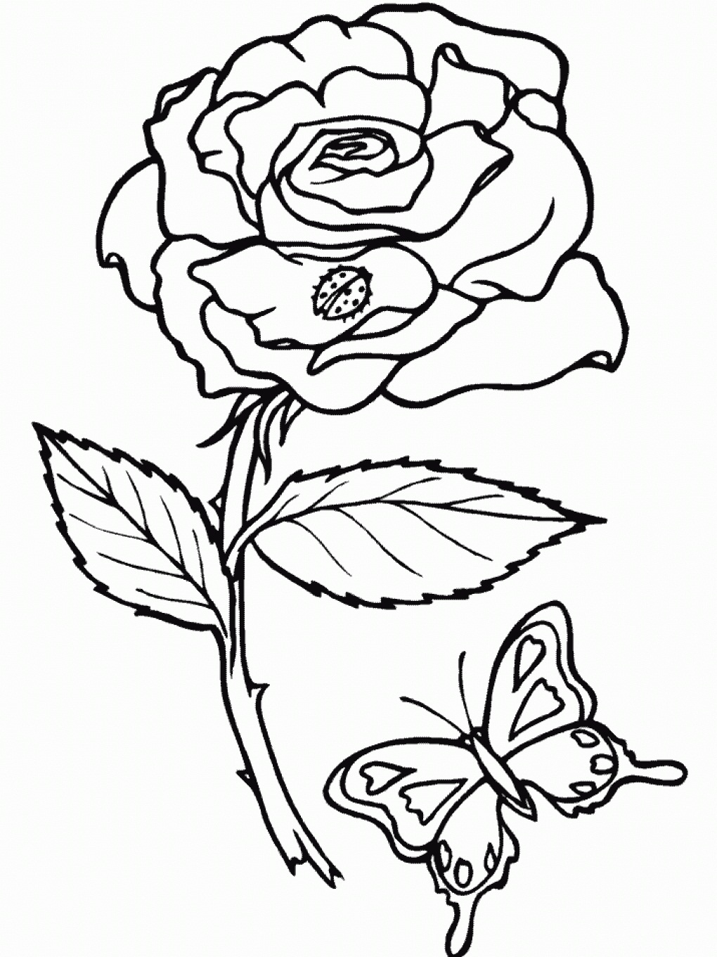 free coloring pages roses - Printable Coloring Pages Roses