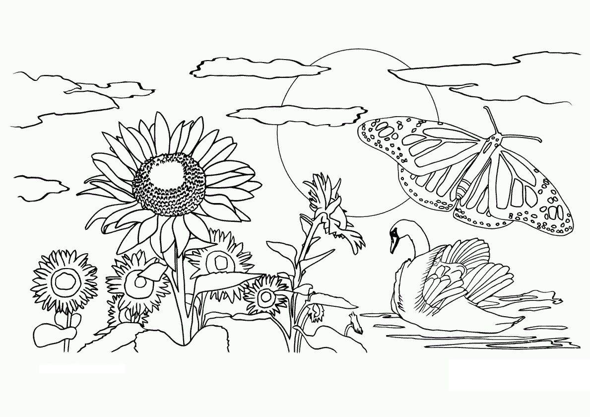 Free Printable Nature Coloring Pages For Kids Best