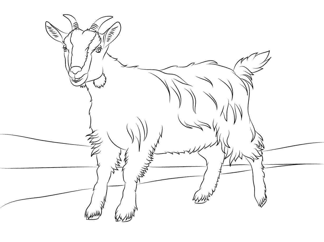 Beautiful Free Printable Goat Coloring Pages For Kids ...