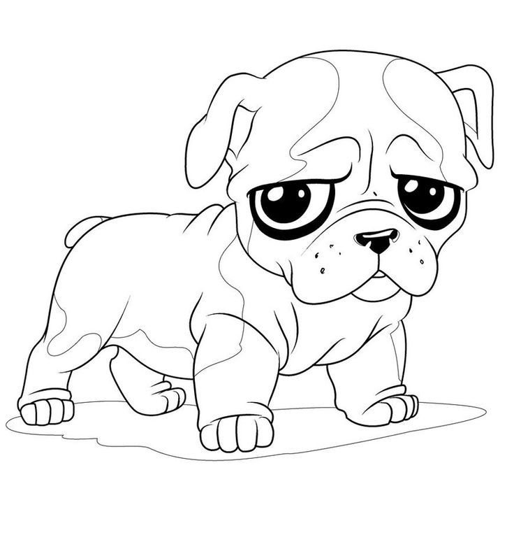 Pug Coloring Pages - Best Coloring Pages For Kids - best of coloring pictures of dogs and puppies