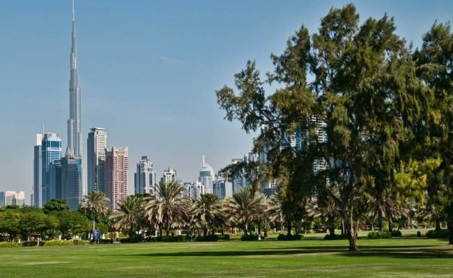 Best Picnic Spots In Dubai Dubai Vacations Holidays In Dubai Dubai Day Trips Dubai