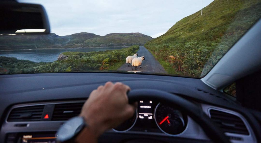 Road-trip Ecosse