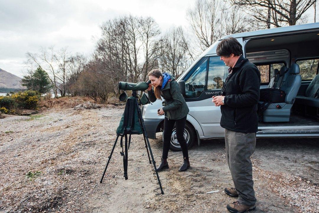 guide pour voir des cerfs en ecosse