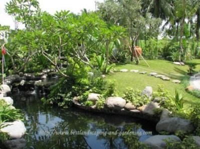 desain kolam ikan minimalis belakang rumah