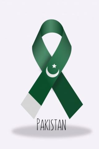 Leather Wallpaper Iphone 6 Pakistan Flag Ribbon Download Mobile Wallpaper