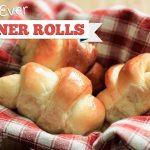 Best Dinner Rolls