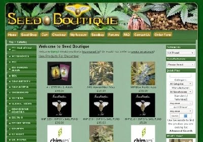 seed boutique review
