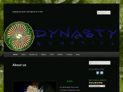 Dynasty Seeds Review