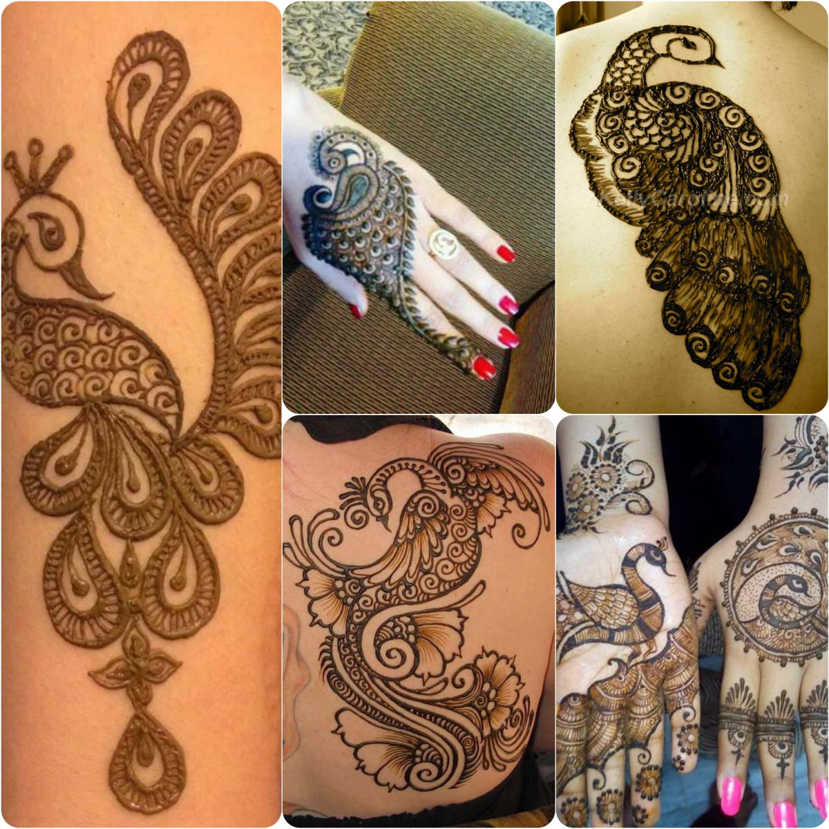 Enjoy some of our favorite peacock mehndi designs from the gallery if you like any do let us known in the comment section below and don t forget to visit
